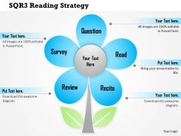 0614 Sqr3 Reading Strategy Powerpoint Presentation Slide Template