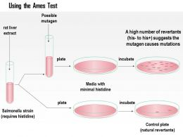 0614 Using The Ames Test Medical Images For Powerpoint