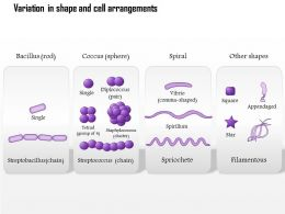 0614 Variation In Shape And Cell Arrangements Medical Images For Powerpoint