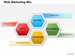 0614 Web Marketing Mix Powerpoint Presentation