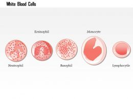 0614 white blood cells Immune System Medical Images For PowerPoint