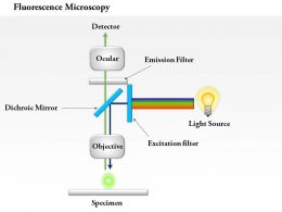 0714 Fluorescence microscopy Medical Images For PowerPoint