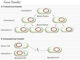 0714 Gene Transfer Medical Images For PowerPoint