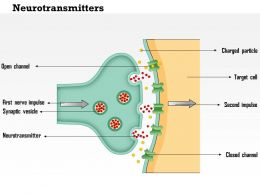 0714 Neurotransmitters Medical Images For PowerPoint
