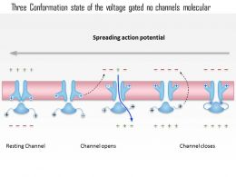 0714 Three Conformation State Of The Voltage Gated Na Channel Medical Images For Powerpoint