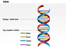 0814 DNA Medical Images For Powerpoint