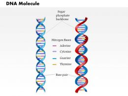 0814 DNA Molecule Medical Images For PowerPoint