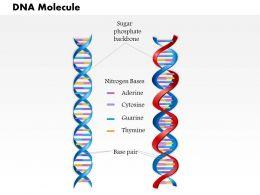 0814_dna_molecule_medical_images_for_powerpoint_Slide01