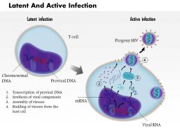 0814 Latent And Active Infection Of T Cell By HIV Medical Images For Powerpoint