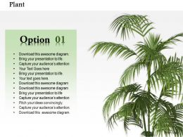 0814 Live Plant For Nature Environment Graphic For Powerpoint