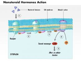 0814 Nonsteroid Hormones Action Medical Images For PowerPoint