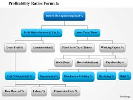 0814 Profitability Ratios Formula Powerpoint Presentation Slide Template