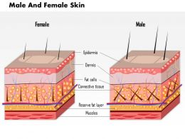 0814 Skin Male And Female Medical Images For PowerPoint