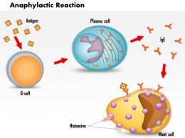 0914 Allergy And Anaphylaxis Medical Images For PowerPoint