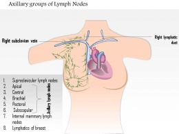 0914 Axillary Groups Of Lymph Nodes Medical Images For PowerPoint