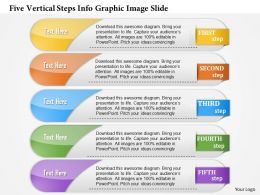 0914 Business Plan Five Vertical Steps Info Graphic Image Slide Powerpoint Template