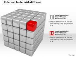 0914 Cubes And Individual Red Cube For Leadership Ppt Slide Image Graphics For Powerpoint