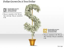 0914 Dollar Grows On A Tree Dollar Symbol Image Graphics For PowerPoint