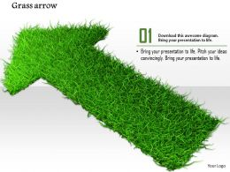 0914 Grass Arrow Growth Concept Ppt Slide Image Graphics For Powerpoint