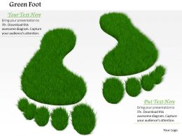 0914 Green Grass Foot Imprints Ppt Slide Image Graphics For Powerpoint