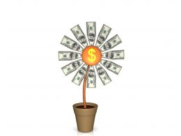 0914 Plant Of Dollar Currency For Growth Stock Photo