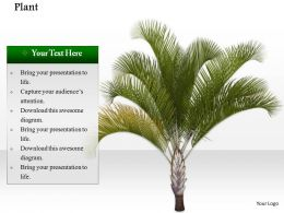 0914 Plants Green Environment Concept Ppt Slide Image Graphics For Powerpoint