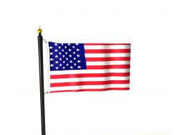 0914 The Flag Of United States Of America Image Stock Photo