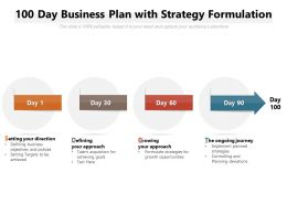 100 Day Business Plan With Strategy Formulation
