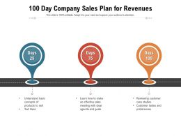 100 Day Company Sales Plan For Revenues