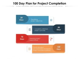 100 Day Plan For Project Completion