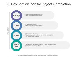 100 Days Action Plan For Project Completion