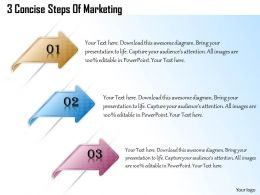1013 Busines Ppt diagram 3 Concise Steps Of Marketing Powerpoint Template