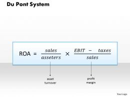 1103 Du Pont System Powerpoint Presentation