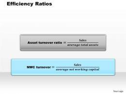 1103 Efficiency Ratios Powerpoint Presentation