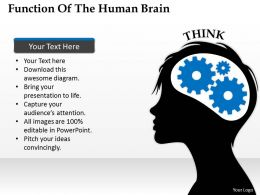 1103 Strategic Management Function Of The Human Brain Consulting Diagram