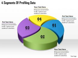 1113 Business Ppt diagram 4 Segments Of Profiling Data Powerpoint Template
