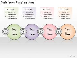 1113 Business Ppt Diagram Circle Process Using Text Boxes Powerpoint Template