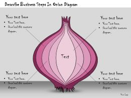 1113 Business Ppt Diagram Describe Business Steps In Onion Diagram Powerpoint Template