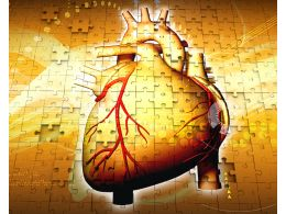 1114 Anatomy Of Human Heart On Puzzle Background Stock Photo