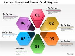 1114 Colored Hexagon Flower Petal Diagram Powerpoint Template