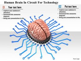 1114 Human Brain In Circuit For Technology Image Graphics For Powerpoint