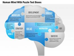 1114 Human Mind With Puzzle Text Boxes PowerPoint Template