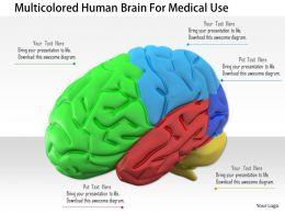 1114 Multicolored Human Brain For Medical Use Image Graphic For Powerpoint