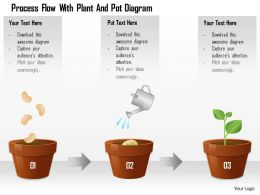 1114 Process Flow With Plant And Pot Diagram Powerpoint Template