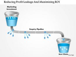1114 Reducing Profit Leakage And Maximizing Roi Powerpoint Presentation