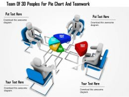 1114 Team Of 3d Peoples For Pie Chart And Teamwork Ppt Graphics Icons