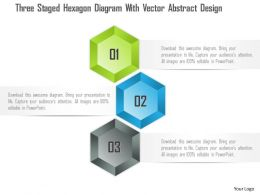 1114 Three Staged Hexagon Diagram With Vector Abstract Design PowerPoint Template