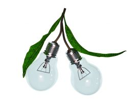1114 Two Glass Bulbs For Electricity Stock Photo