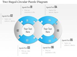 1114 Two Staged Circular Puzzle Diagram Powerpoint Template