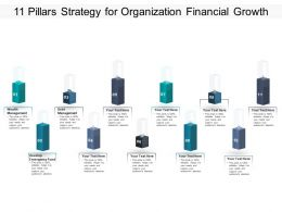 11 Pillars Strategy For Organization Financial Growth
